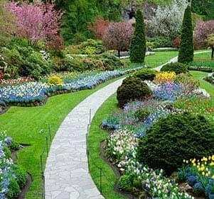 أعمال الحدائق واللاندسكيب